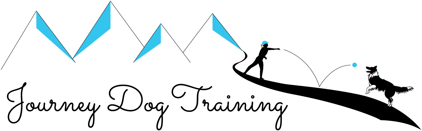 Journey Dog Training