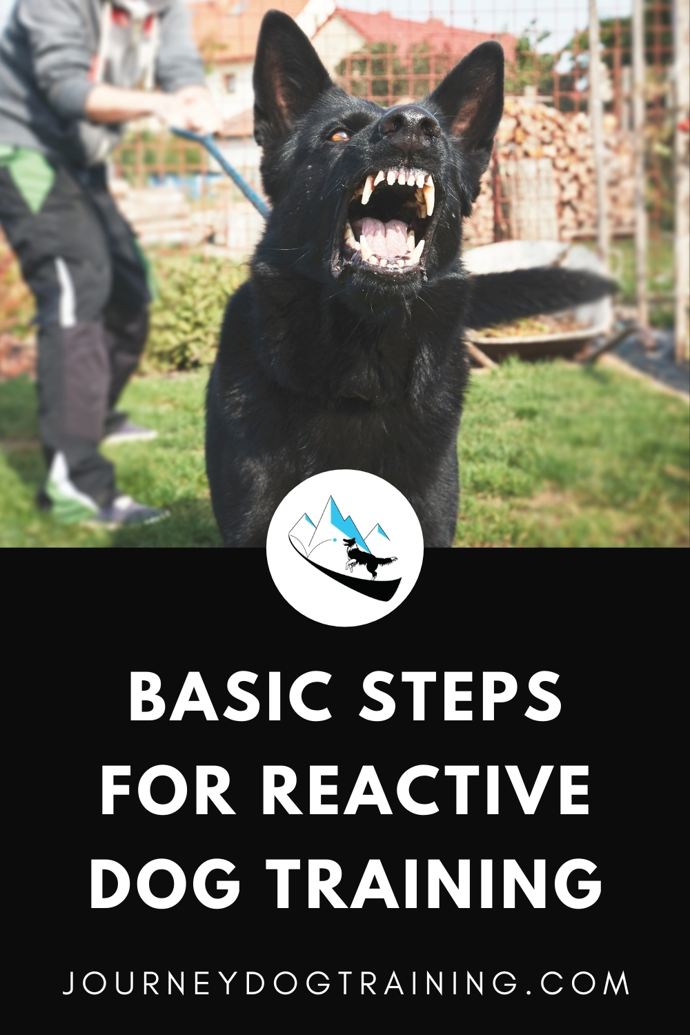 Basic steps for reactive dog training | journeydogtraining.com