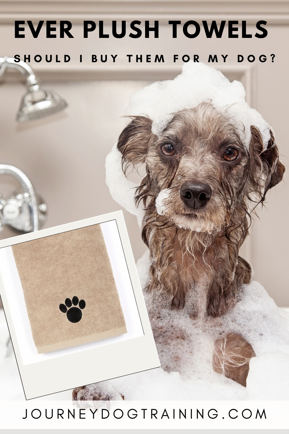 Should I buy Ever Plush Towels for my dog? | journeydogtraining.com