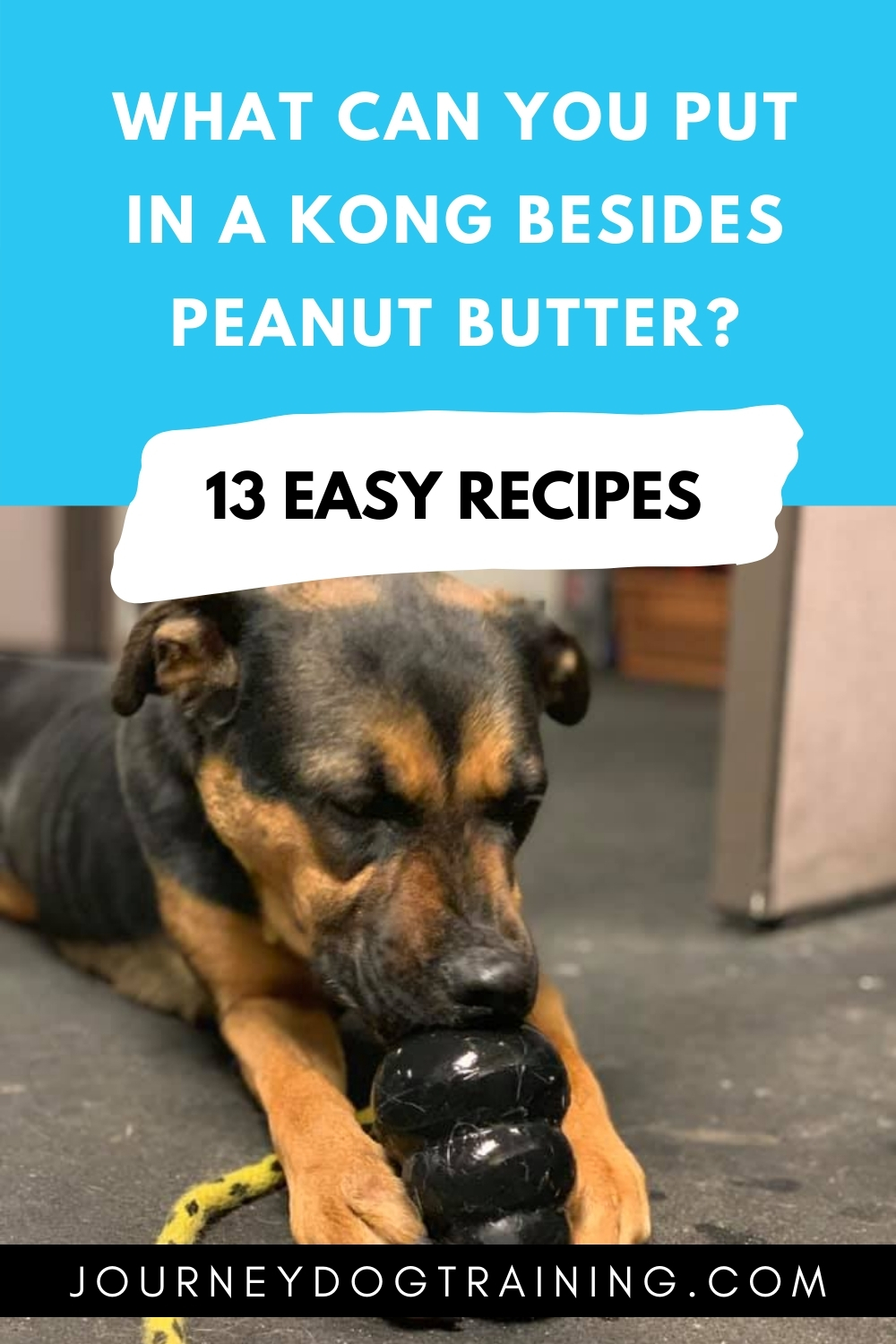 what can you put in a kong besides peanut butter? | journeydogtraining.com