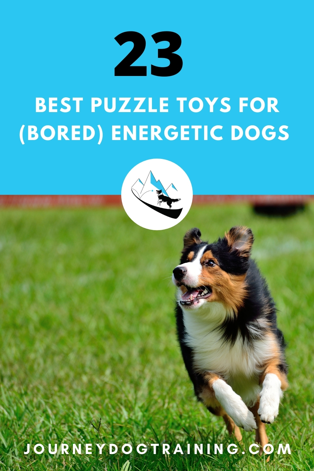 23 Best puzzle toys for bored energetic dogs.energetic dogs need a daily outlet - especially while their humans are away at work. Busting boredom in energetic dogs isn't a small task, but it's absolutely necessary for your own sanity.  https://journeydogtraining.com/puzzle-toys/