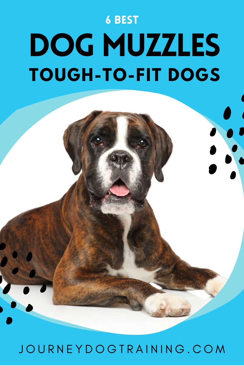 6 best muzzles for hard to fit dogs. | journeydogtraining.com