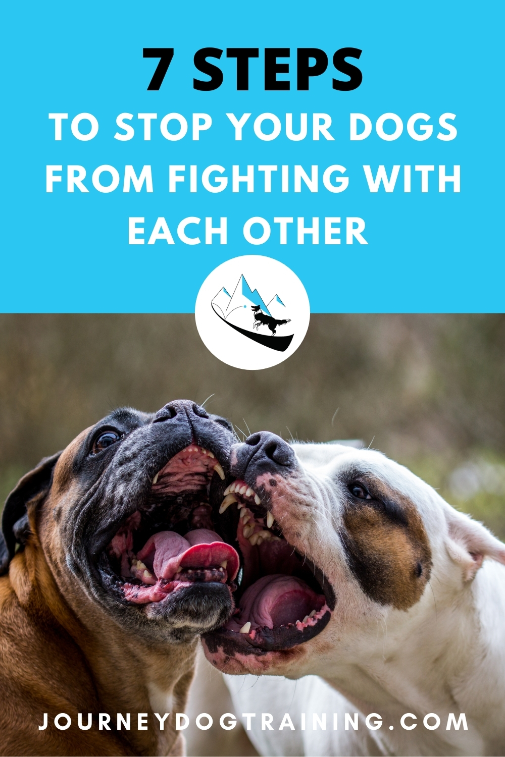 7 steps to stop your dogs from fighting with each other   journeydogtraining.com