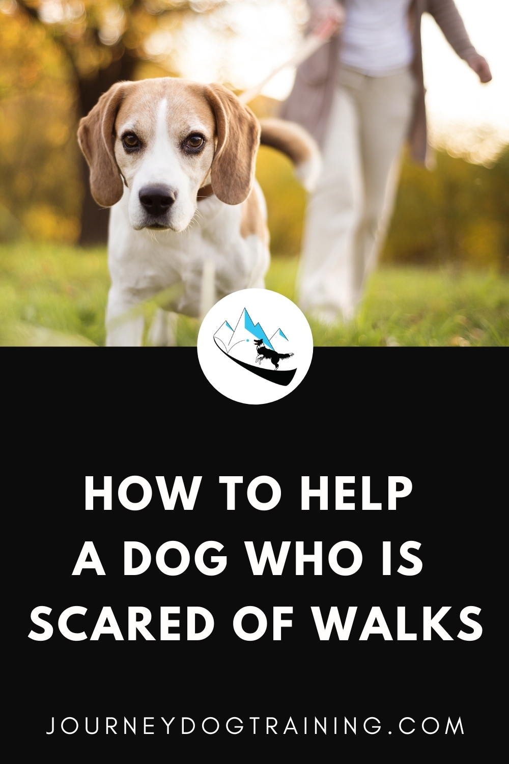 how to help a dog who is scared of walks | journeydogtraining.com