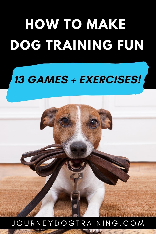how to make dog training fun 13 games and exercises | journyedogtraining.com