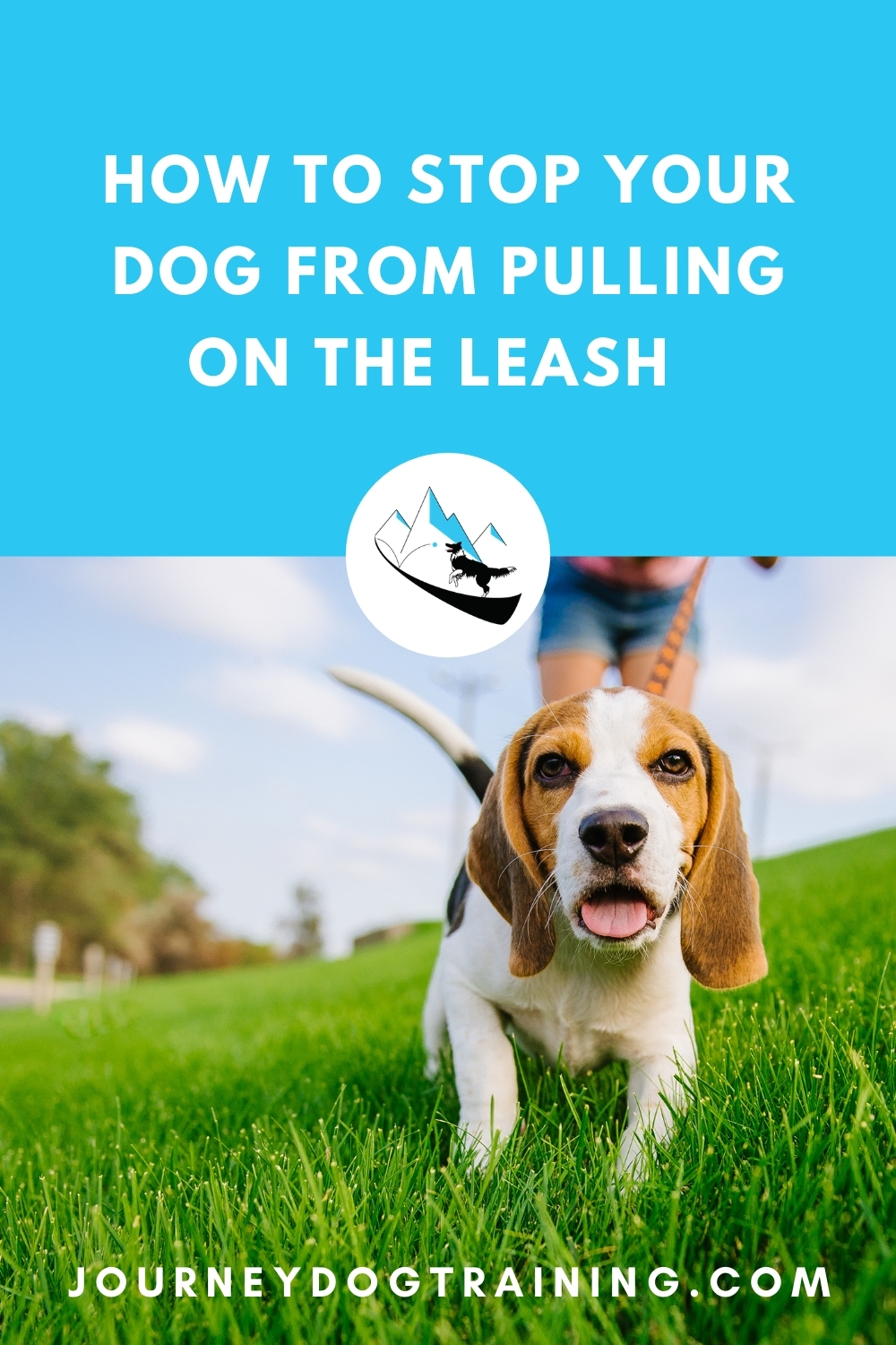 how to stop your dog from pulling on the leash | journeydogtraining.com