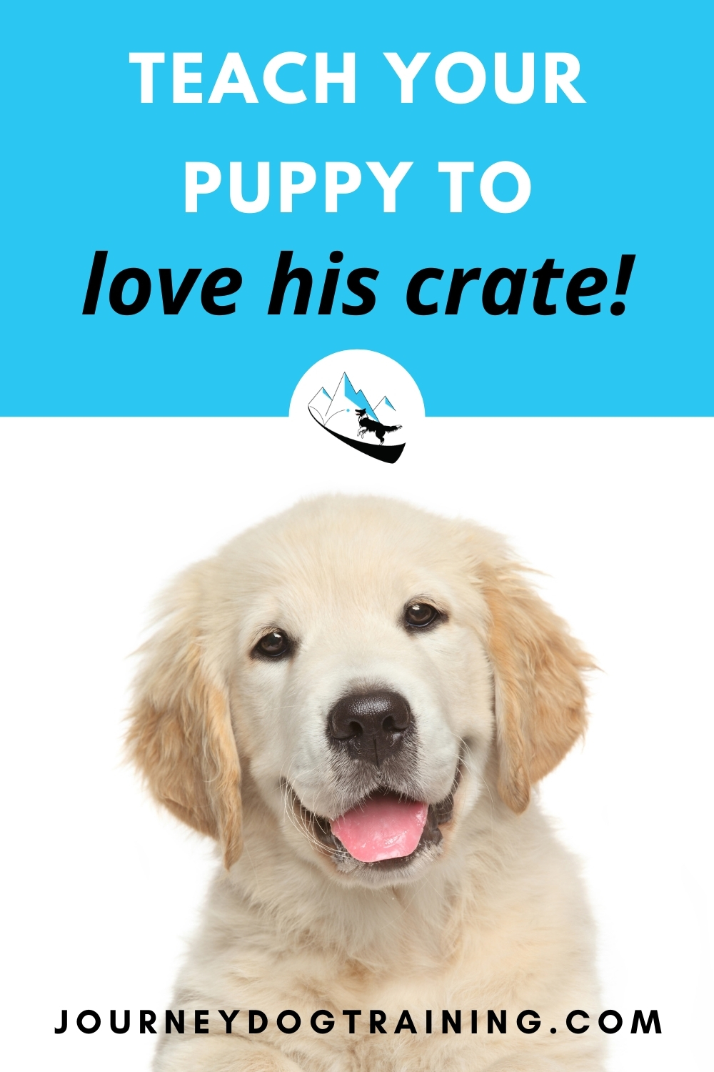 Teach your puppy to love his crate | journeydogtraining.com